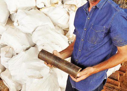 Cut expenses with briquettes